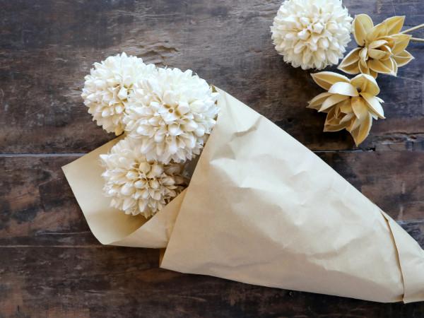 Getrocknete Schneeballblumen Chic Antique